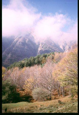 Pievepelago, Italy: armonia di colori