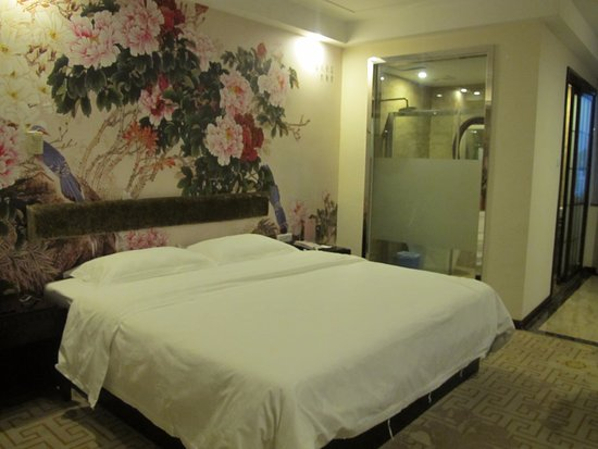 Guilin Zelin Hotel: Номер