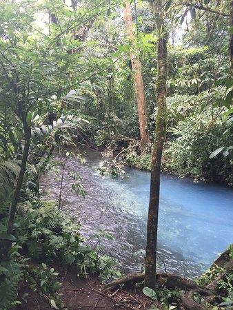 Tenorio Volcano National Park, Kostaryka: De plaats waar de 2 stromen van de rivier Rio de Celeste samenkomen in Tenorio NP