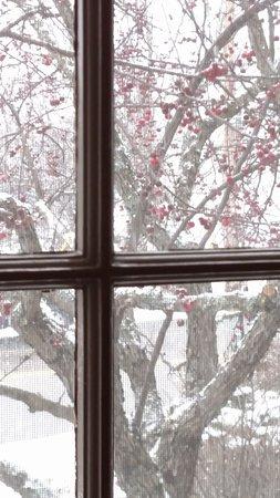 Saint Johnsbury, VT : Thanksgiving morning at the Rabbit Hill Inn