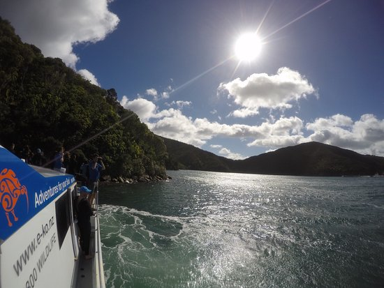 Picton, Neuseeland: What an amazing trip and experience. Recommended for all!