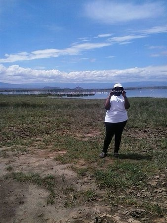 Gilgil, Kenia: Bird Watching. Very rich in birdlife