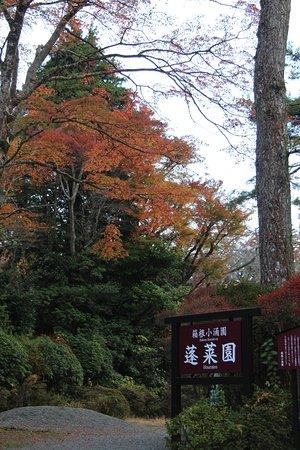 Horai Garden: 蓬莱園の紅葉