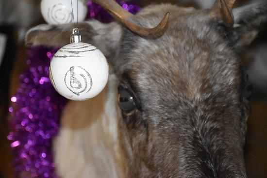 Ambleside Sheepskins Cumbrian Sheepskins Shop 2. Ambleside Cumbria, come and give us a visit.