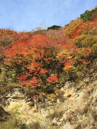 Ichihara, Japan: 梅ヶ瀬渓谷