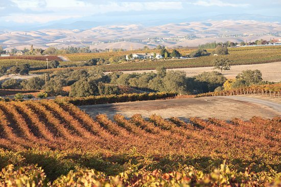 Paso Robles, Kalifornia: View to North on a beautiful fall day