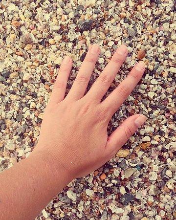 Retiro Beach (dos Ingleses): caracolitos
