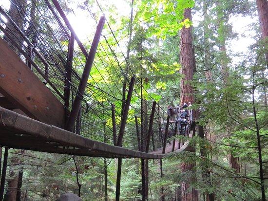 نورث فانكوفر, كندا: Around the park