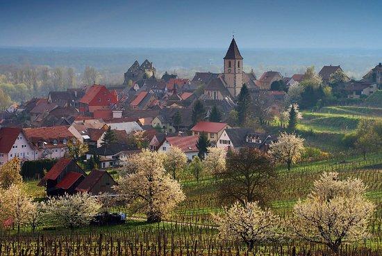 Vogtsburg im Kaiserstuhl, Germany: Burkheim