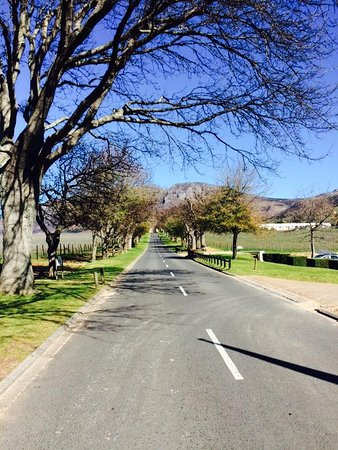 Constantia, جنوب أفريقيا: Groot Constantia, Cape Town