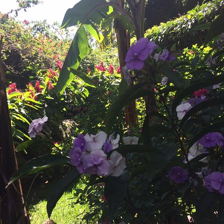 Jaibalito, Гватемала: Peaceful