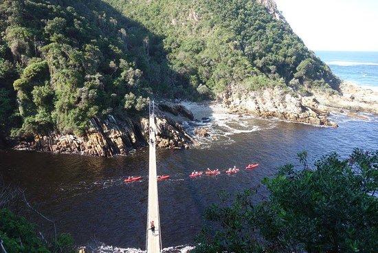 Tsitsikamma National Park, Sudáfrica: ponte