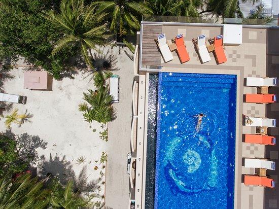 Thulusdhoo Island: Rooftop infinity pool