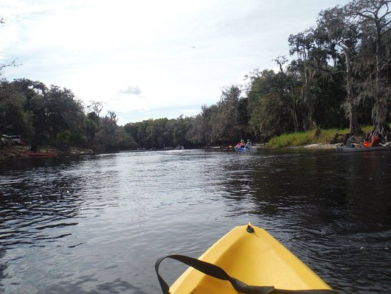 Fisheating Creek Campground : lovely view of the river, rent a kayak