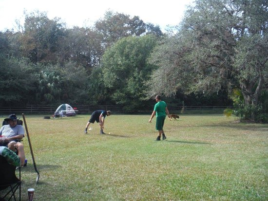 Fisheating Creek Campground : lots of space to play games with the family