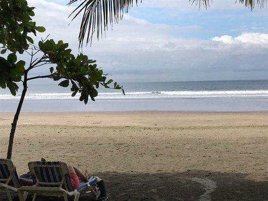 South Beach Hotel: photo2.jpg