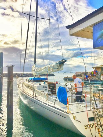 Scotch Mist Sailing Charters