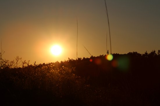 Murrells Inlet, Carolina del Sud: sunset at the Beach!!