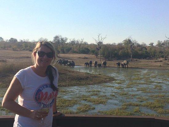Arathusa Safari Lodge