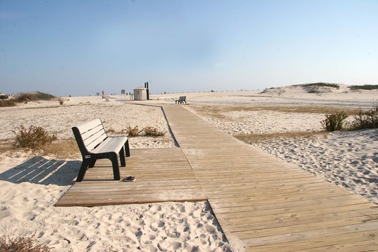 Assateague Island National Seashore: Easy access to the beach