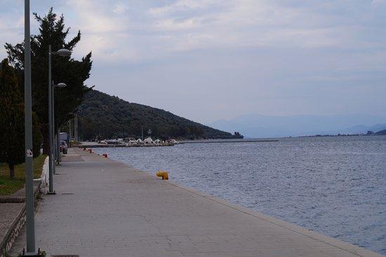 Amfilochia