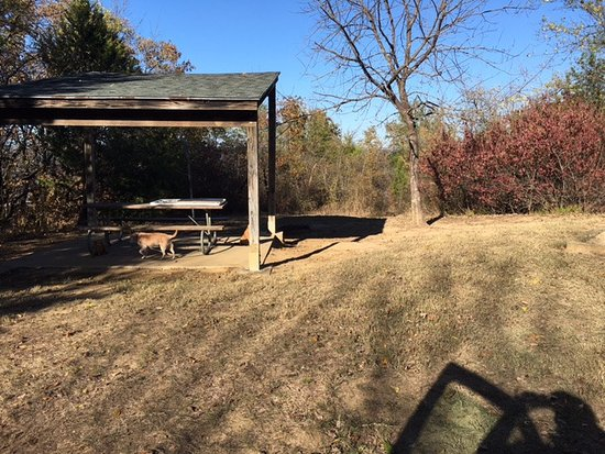 Cooper Lake State Park: This was only one side of our RV Pad. The there was another 10 feet on the opposite side.