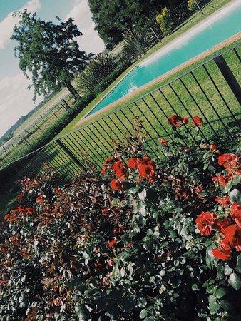 Estancia Los Dos Hermanos: The pool