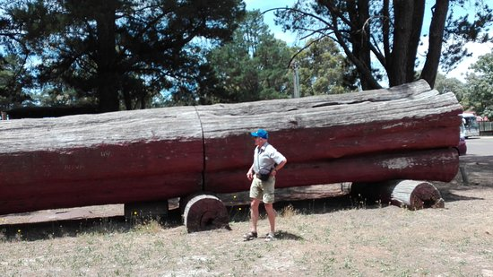 Dwellingup, Australien: Trains and trees