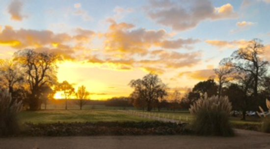 Hintlesham, UK: View from Garden Room in late November
