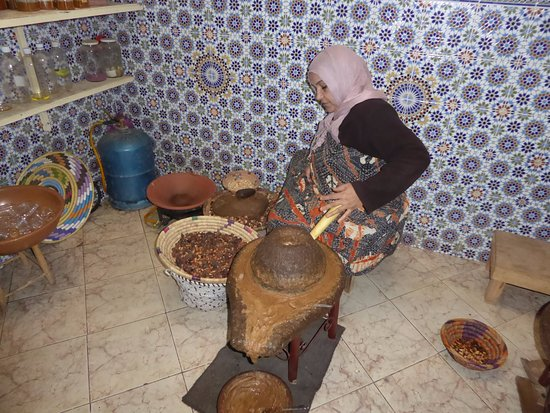 Taroudant Guided Tours Day Tours