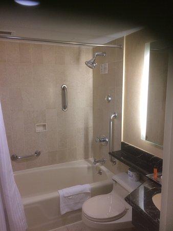 Hilton Manhattan East: photo1.jpg