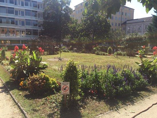 Landesgalerie: Jardim principal