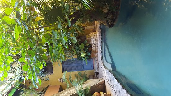 Casa Mexilio Guest House: 20161123_162913_large.jpg