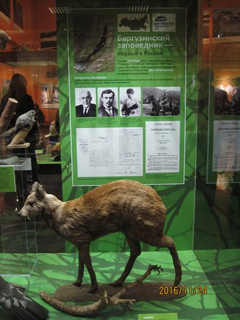 State Darwin Museum : Экспозиция Баргузинского заповедника в Дарвиновском музее