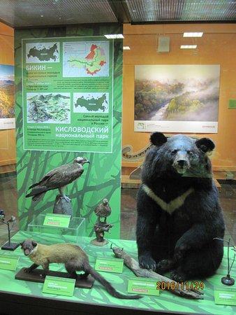 State Darwin Museum : Экспозиция Кисловодского заповедника в Дарвиновском музее