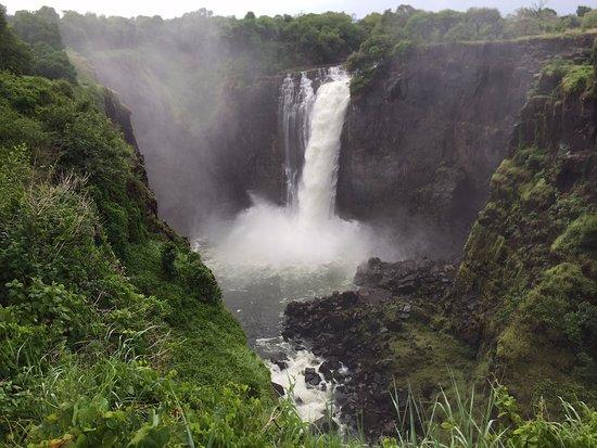 Victoria Falls, Zâmbia: Great Photo Op Perch!!