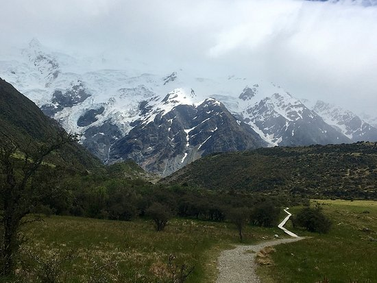 Rangiora, Nueva Zelanda: The little track back to the campground at Mount Cook National Park.