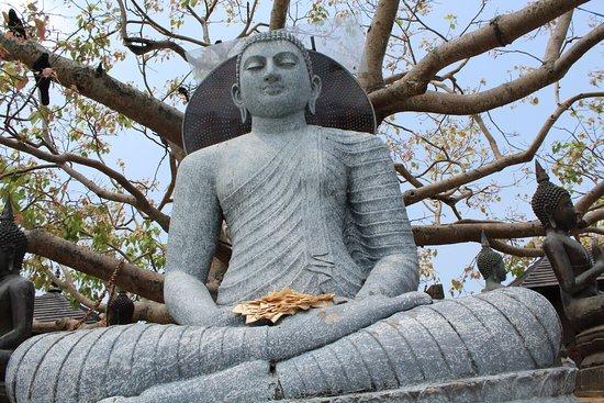 Seema Malaka Temple: Bodhi tree and status