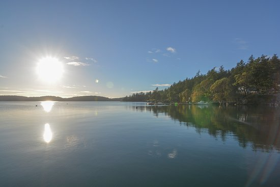 Eastsound, WA: A photo taken from the public dock of the Blue Heron B&B