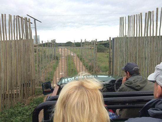 Kenton-on-Sea, South Africa: Driving through the gates is like going into Jurassic Park!