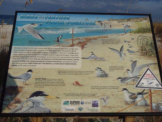 Port Saint Joe, Floryda: Interpretive sign t St. Joseph Peninsula State Park
