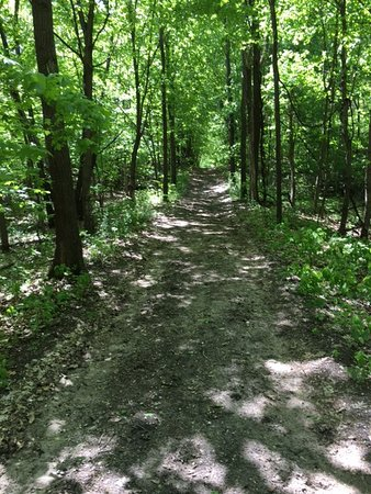 Hanover, MN: Hiking Trail  - Crow-Hassan Park Reserve