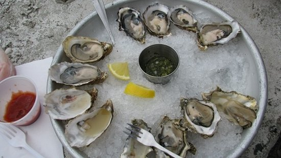 Lilliwaup, WA: Oysters in the half shell