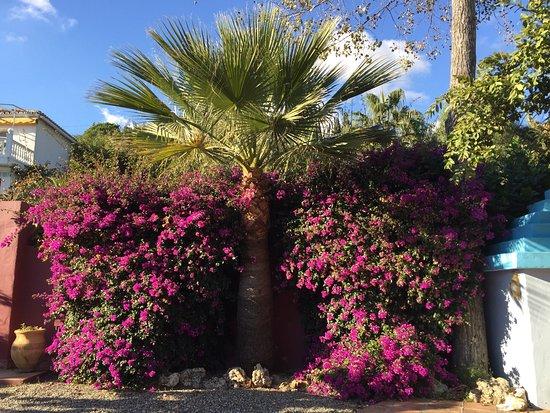 Benajarafe, Spanyol: Eindrücke aus der Casa
