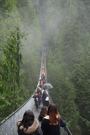 North Vancouver, Canada: The suspension bridge (when you enter)