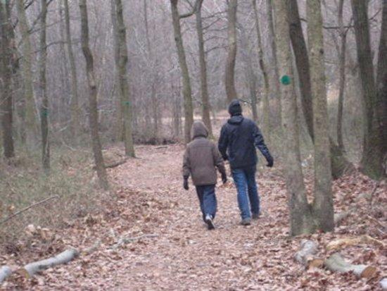 Staten Island, Νέα Υόρκη: Wolf's Pond Trail