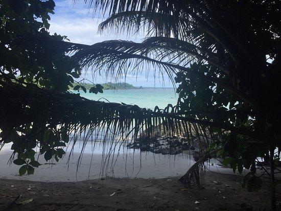 Red Frog Beach Island Resort & Spa: photo1.jpg