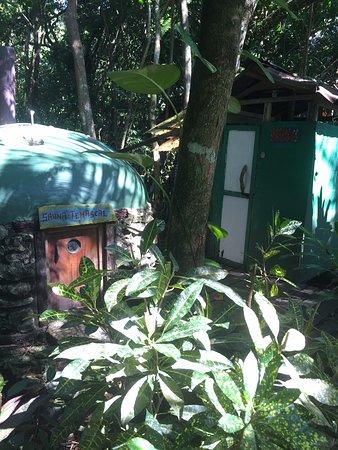 Hotel Finca Tatin: sauna
