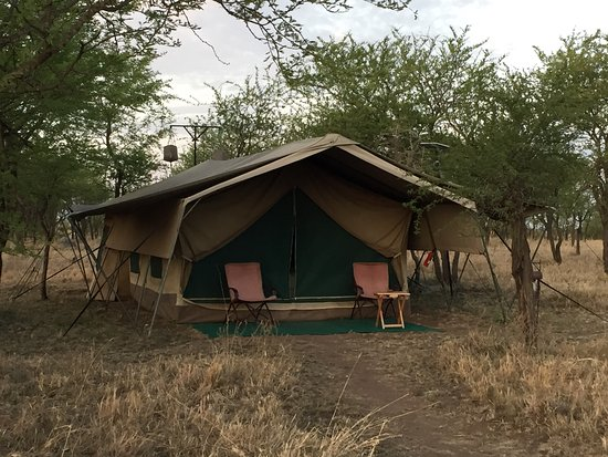 Serengeti Wilderness Camp: The most comfy, well-appointed tent we've ever been in!