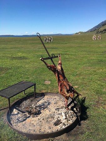 The Singular Patagonia: photo2.jpg